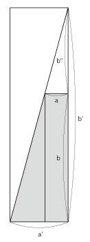 超オイルサーディン裁ち350-02.jpg